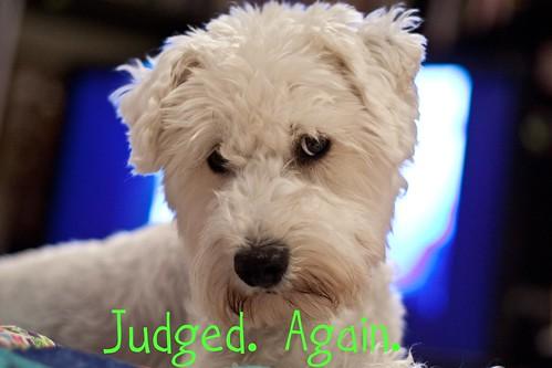 Judged again.