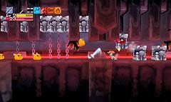 Cave Story 3D - Plantation 17
