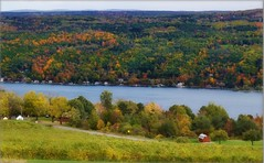 Autumn Landscape (blmiers2) Tags: autumn trees newyork green fall nature water landscape nikon winery fingerlakes keuka explored d3100 2011photography blm18 blmiers2
