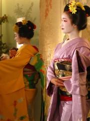 IMG_9221 (CLF) Tags: maiko geiko geisha 京都 東京 omotesando 表参道 青山 芸者 芸妓 舞妓 fukuho ふく帆 弥ゑ美 yaemi