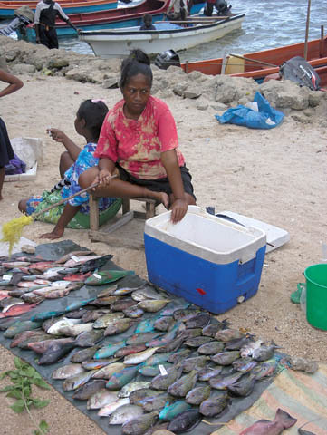 Women are heavily involved in many aspects of fisheries and aquaculture in the Pacific and need to be included in all decisions. Pacific. Photo by Jamie Oliver, 2008