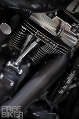 wingman_DSC8074 (ducktail964) Tags: harleydavidson touring custombike screamineagle flhx
