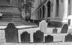 ghosts (Mattron) Tags: nyc newyorkcity newyork history graveyard colonial headstones financialdistrict trinitychurch gothamist 18thcentury lowermanhattan curbed