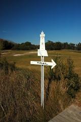 Cockspur Lighthouse-74