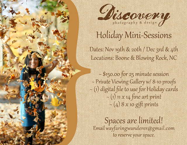 Holiday Mini-Sessions | Boone Area Photographer