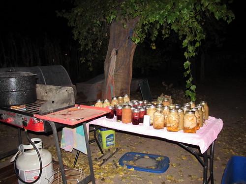 nightime canning
