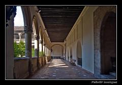 Granada 4971 (Flix Gonzlez) Tags: espaa spain nikon andalucia granada monasterio jeronimos claustro wow1 nikkor18200 nikond90 flickraward nikond90club felixgp felix2510