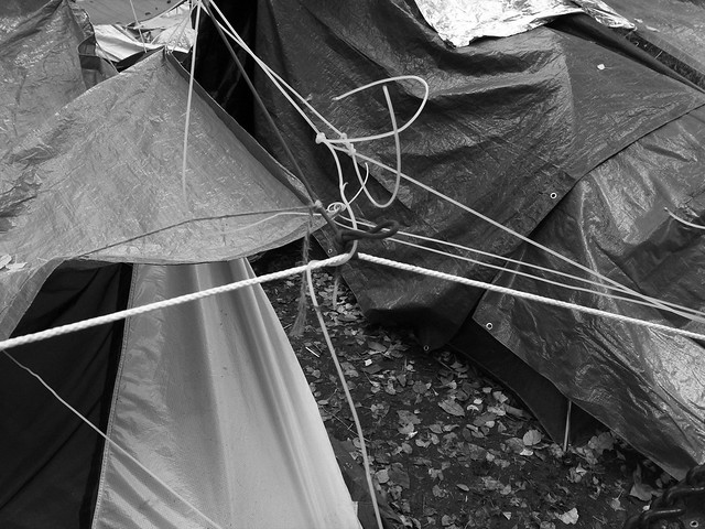 occupy portland 3