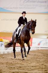 IMG_4528 (White Bear) Tags: horses horse cup russia president artem dressage bitsa      makeev