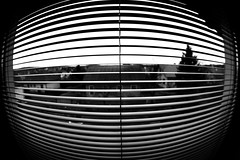 Louver (CoolMcFlash) Tags: blackandwhite bw white house black ex window monochrome lines canon photography eos austria sterreich pattern fotografie view pov fenster perspective sigma haus wideangle jalousie fisheye pointofview sw muster schwarz perspektive louver 10mm weitwinkel linien weis fav10 blickwinkel fischauge wlbung 60d