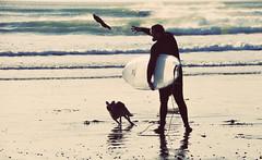 Fetch (Shades of Grey.) Tags: friends dog guy beach sand surf buddies buddy spray surfboard leash fetch companions
