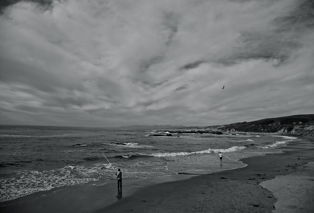 Pescadero Shore