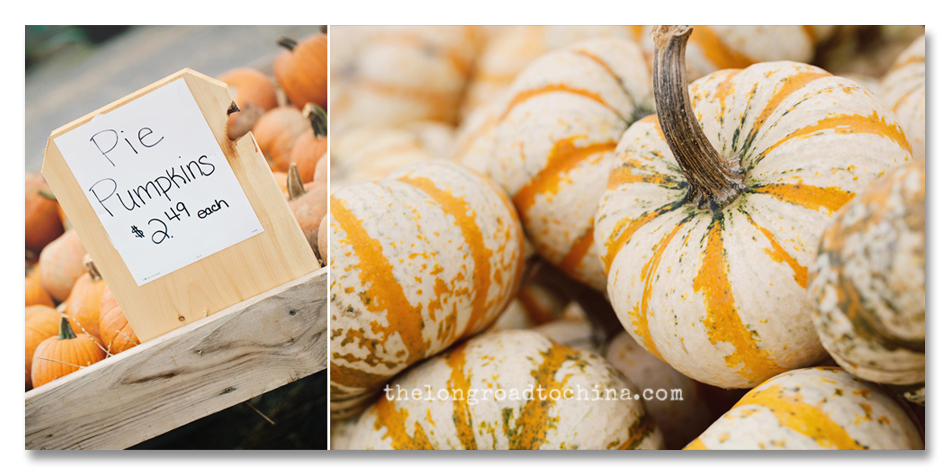 Pumpkin Carts Collage