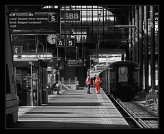 _SG_2011_09_8056_IMG_6375 (_SG_) Tags: bw white black car station train canon wagon schweiz switzerland is blackwhite suisse rail railway zug bahnhof sbb basel railwaystation 7d rails usm schwarzweiss departure weiss ef schwarz basle gleis 24105 railtrack abfahrt baselsbb f4l scharzweiss 24105mm schwarzundweiss canonef24105mmf4lisusm bahngleis canonef24105mm ef24105mm ef24105 railwaycar eos7d canoneos7d canon7d