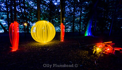 Orb by the Camp Fire {explored} (Olly Plumstead) Tags: park blue trees light red green leaves yellow forest canon woodland painting fire high long exposure floor country orb sigma campfire le olly 1020mm elms plumstead 450d