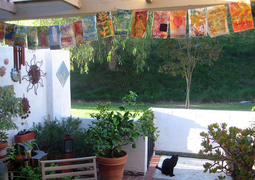 17 prayer flags (and 1 feral kitty)