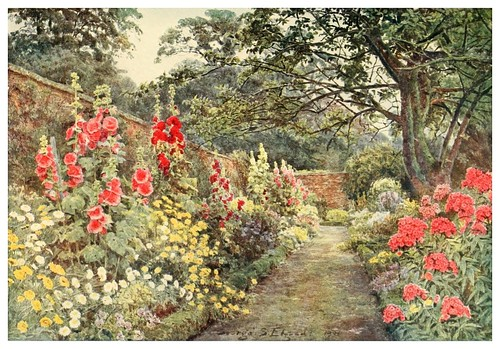 013-Malvarrosas en Blyborough-Some English gardens 1904- George S. Elgood