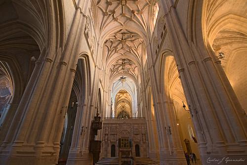 Catedral de Palencia by Carlos_JG