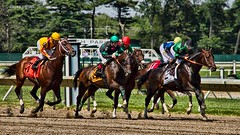 A Horse Race to the Finish (Darren LoPrinzi) Tags: horses horse usa sports animal animals race america canon us newjersey movement action nj racing horseracing monmouthpark horceracing canoneos7d