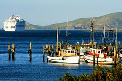 Careys Bay (_setev) Tags: newzealand fish water port island bay boat seaside still ship village south stephen nz anchor mooring otago dunedin rest shelter murphy chalmers careys setev downunderphotos stephenmurphy httpdownunderphotosblogspotcom