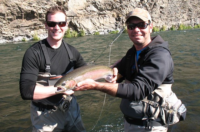 Deschutes summer steelhead