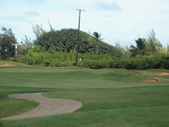 Turtle Bay Colf Course 280