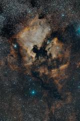 NGC 7000 - North America Nebula Synthetic RGB (Urlaubsknipser) Tags: sii oiii halpha ngc7000 astrofotografie nordamerikanebel astrotrac Astrometrydotnet:status=solved sternbildschwan schmalband Astrometrydotnet:version=14400 hstpalette Astrometrydotnet:id=alpha20111131120466