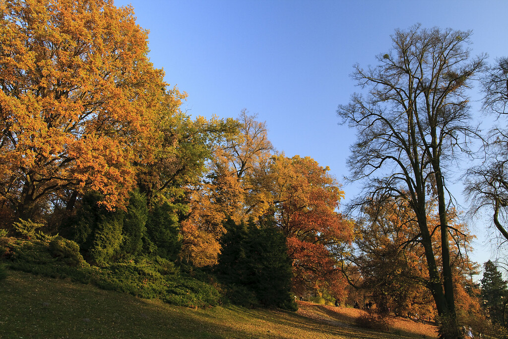 "Autumn in Goluchow / Poland ""11"