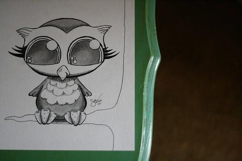 owl. c/o shaun sanders.