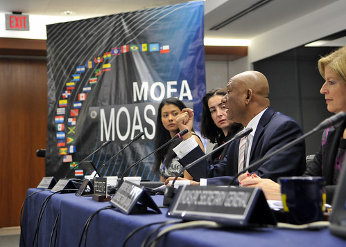 OAS Held XI Model Permanent Council for Interns