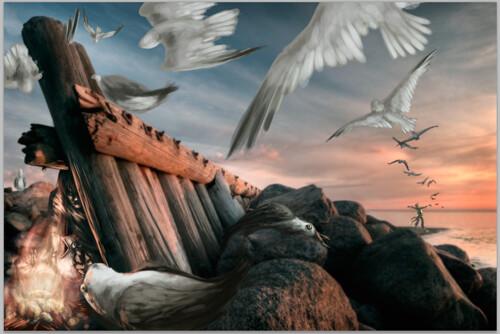 SeagullWIP4