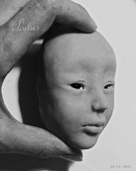 Lotus2a (customlovers) Tags: girl asian doll lotus head chinese wip bjd apodoll