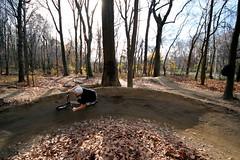 Cunningham Park, Queens (DC4416) Tags: thanksgiving nyc autumn sunset fall brooklyn bmx manhattan bearmountain queens appalachiantrail sigma1020mm cunninghampark