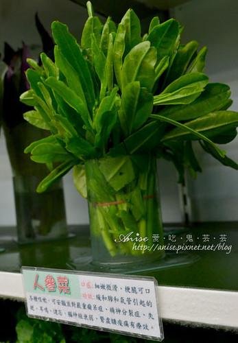 辣滷哇蔬菜森林024.jpg