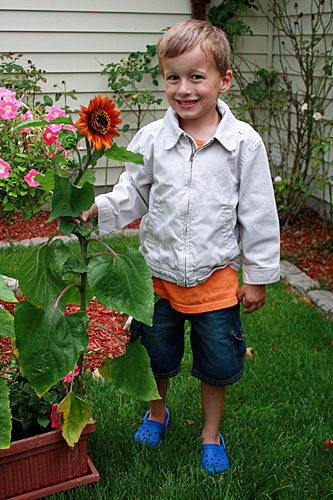 Nathan-and-his-sunflower