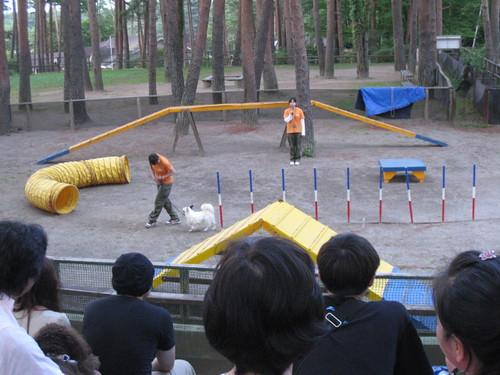 20100710039