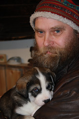 Susi with husky puppy (Exodus Travels - Reset your compass) Tags: travel winter snow travelling finland puppy husky adventure fi win wilderness exodus susi dogsled cfd erasusi
