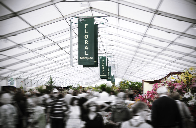 Largest ever... floral marquee