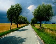 Mot Fru Alstad [EXPLORE] (Marie Granelli) Tags: road summer sky tree skne sweden explore fields sdersltt nikons8000 frualstad