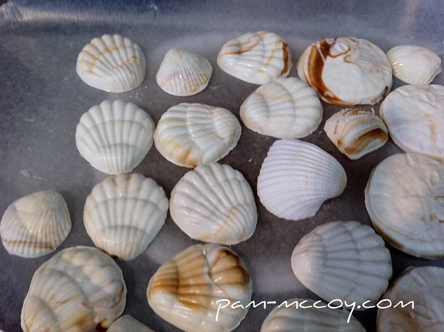 Milk Chocolate Sea Shells