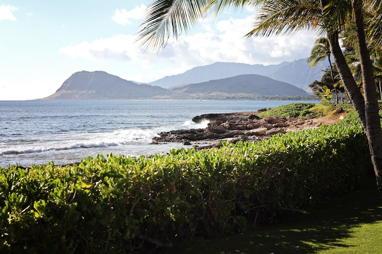 Paradise Cove Luau View copy