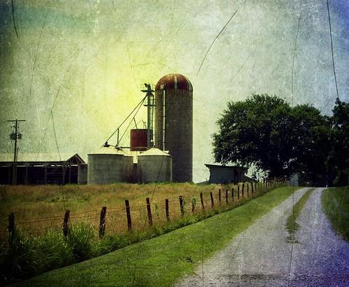 Basehor Area Farm