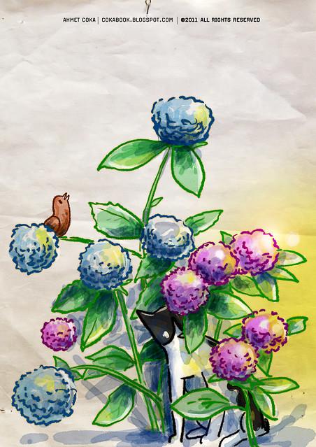 puskul, garden & birds