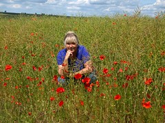 Poppies and Rapeseed (saxonfenken) Tags: people field female person one poppies 811 rapeseed loree gamewinner friendlychallenges thechallengefactory pregamewinner june13th510 811people