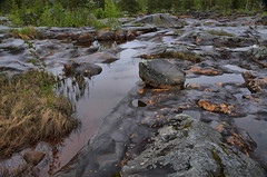 Storforsen Zweden HDR 2011_054_1 (cees van gastel) Tags: water canon landscape rocks sweden stones f28 hdr landschap zweden rotsen stenen tonemapping canonefs1755mmf28isusm ceesvangastel canon40d