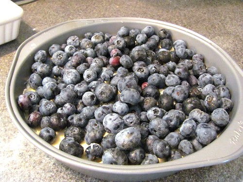 Favourite Recipes from Old New Brunswick Kitchens' Blueberry Buckle