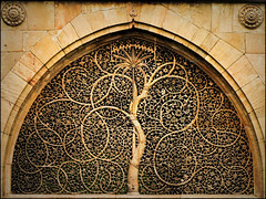 SIDI SAIYYED JALI (manumint-[BUSY]) Tags: india window beautiful stone logo design arch symbol details mosque marble gujarat ahmedabad unofficial jali sultanate sidisaiyyed