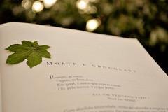 Morte e chocolate. (natáliafazenda) Tags: green dead bokeh chocolate books morte ameninaqueroubavalivros