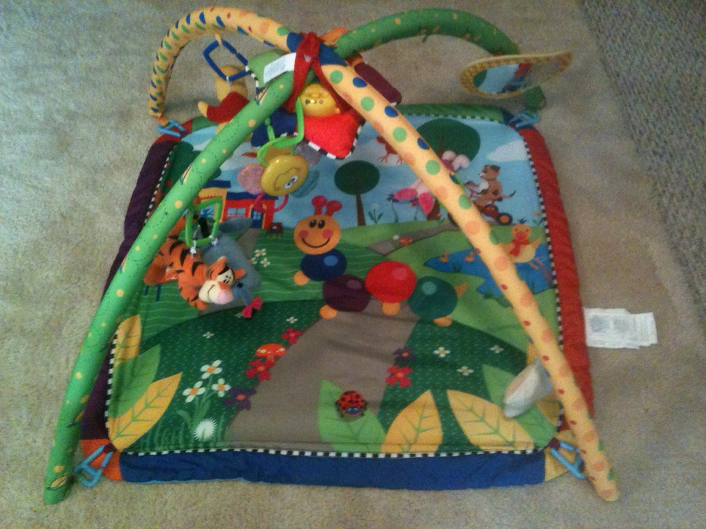 Baby Einstein Seek & Discover Activity Gym New $54 sell for $20