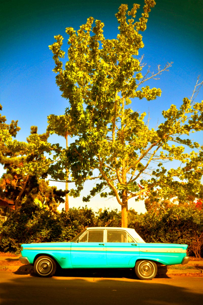Blue car and tree (faux Instagram); click for previous post